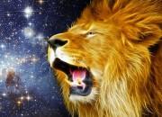 Comsic Lion